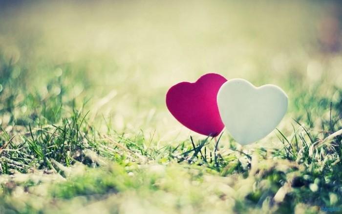 Cuộc đời này, tìm được người thấu hiểu mình mới thực là niềm vui lớn nhất